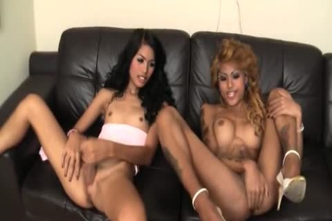 three-some Pov Interracial Ladyboy Thai ladyboy